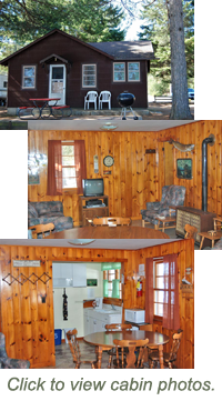 Cabin Rental - Madeline Lake Woodruff, near Minocqua Wisconsin for